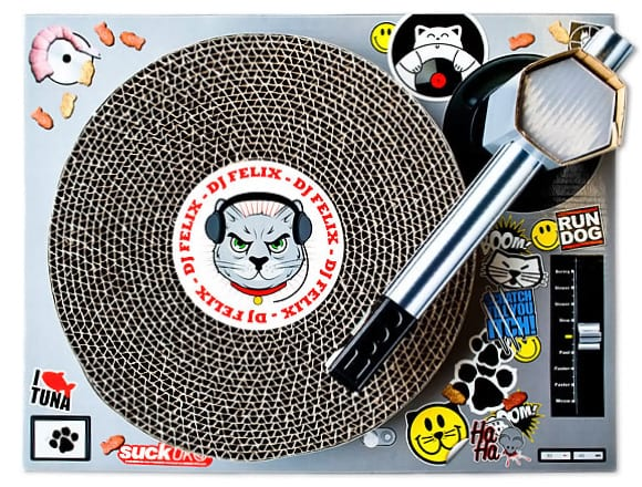 Cat Scratching DJ Decks