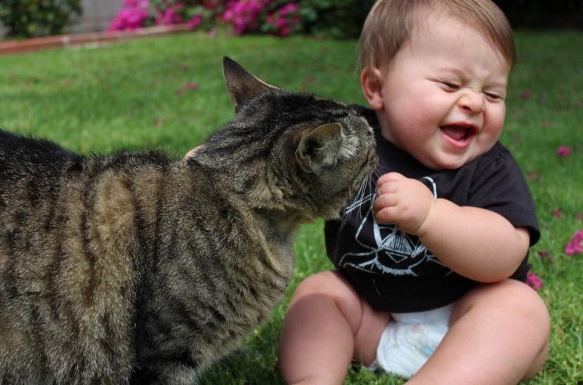 Bebé con gato