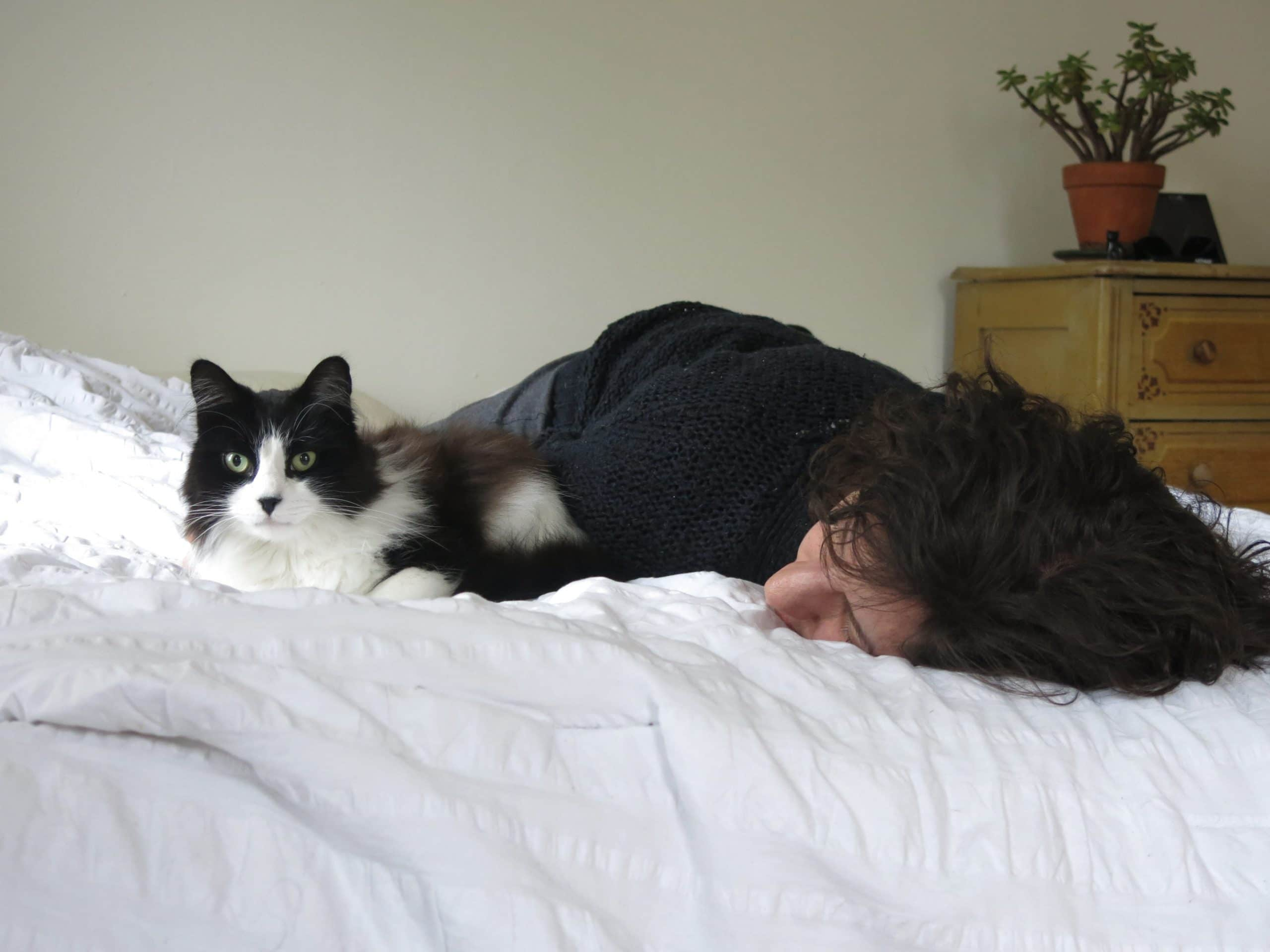 Gato y humano en la cama