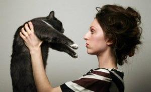 Sigue nuestros consejos para llevarte bien con tu gato