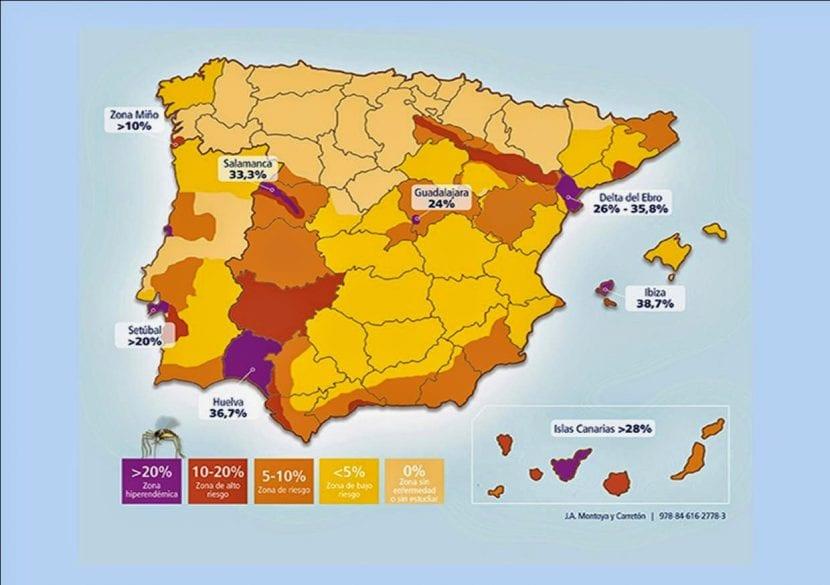 Mapa de riesgo de contagio de filariosis en España