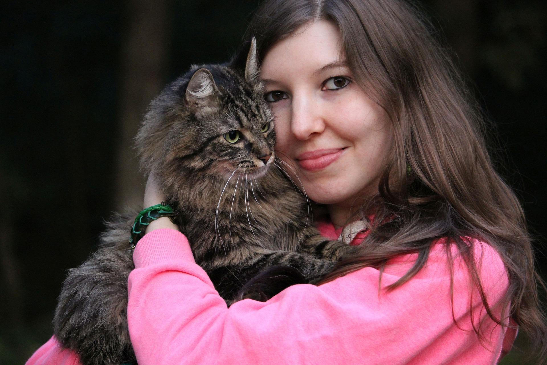 Hay muchos motivos por los que un gato te puede visitar