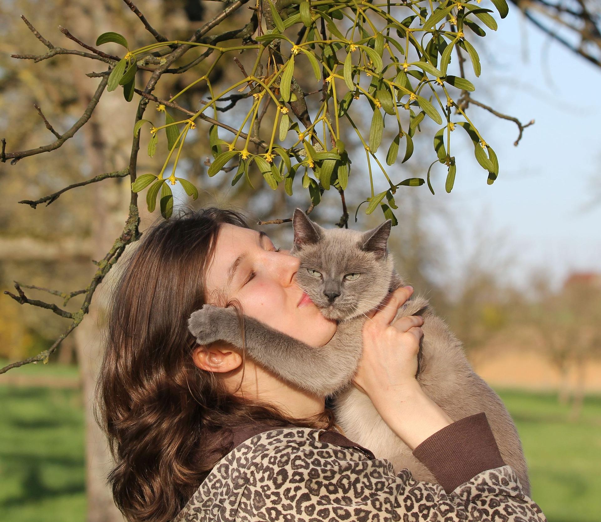 Dale cariño a tu gato