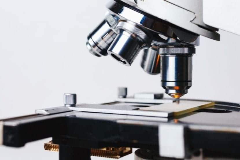 La giardiasis solo se puede detectar a través de un microscopio