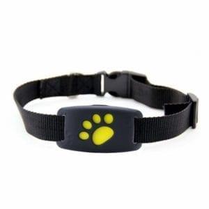 Vista del GPS para gatos LifeUp