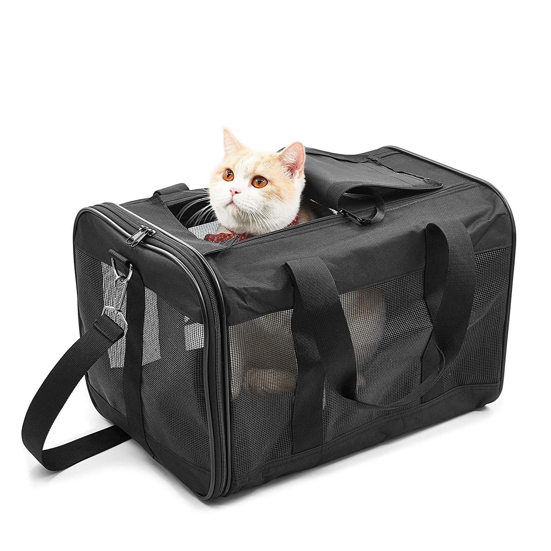Modelo de bolso negro para gatos