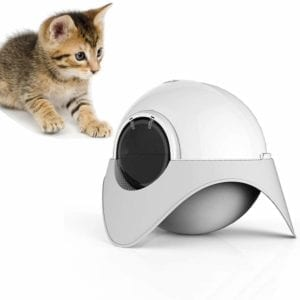 Arenero para gatos autolimpiable