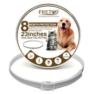 Modelo de collar antipulgas para gatos y perros