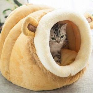 Modelo de casa para gatos