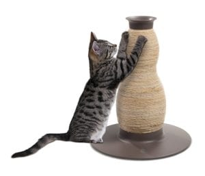 Rascador con forma de reloj de arena para gatos