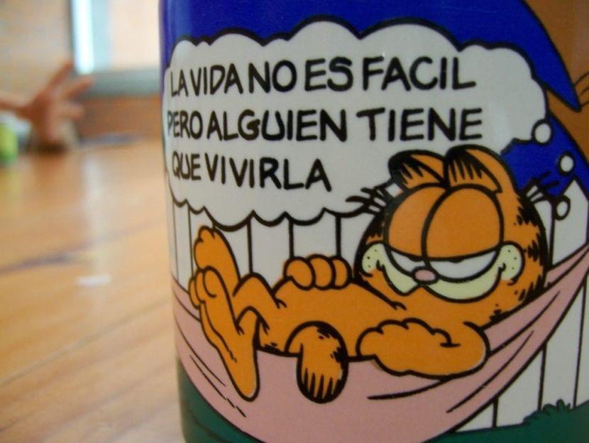 Taza de Garfield